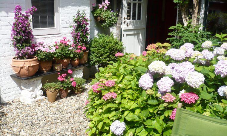tuin Van Asch van Wijckskade 27
